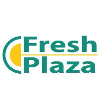 logo-fresh-plaza-lafortuna